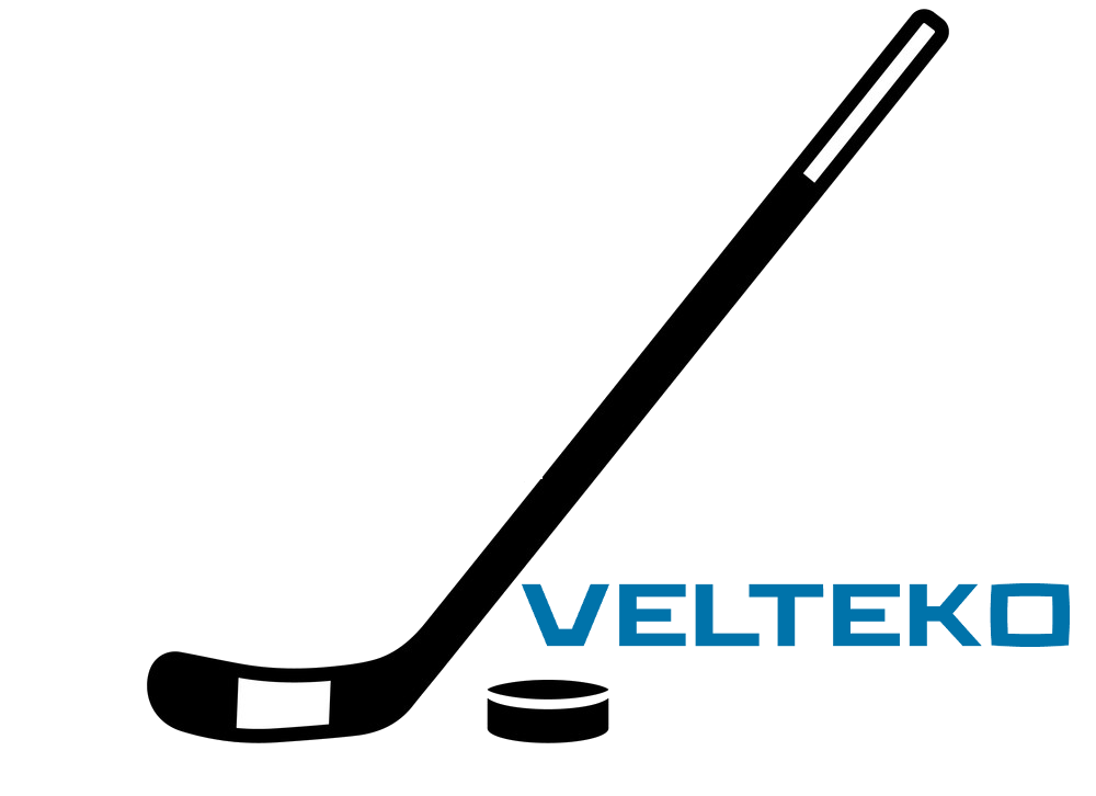 hockey icon vector 16849133